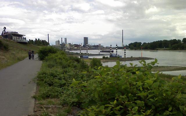 Leverkusen, am Rhein