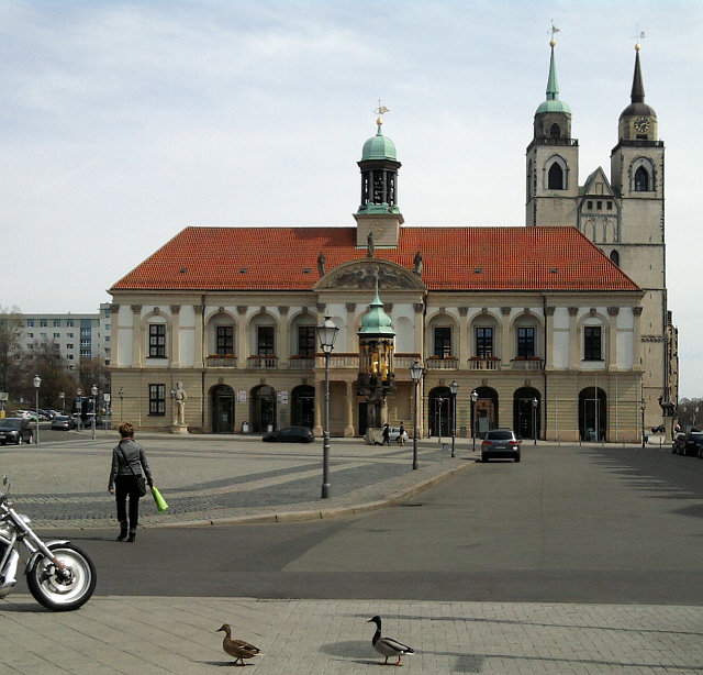 Magdeburg, Marktplatz mit goldenem Reiter  (und Enten) vorm Rathaus (und Johanniskirche)