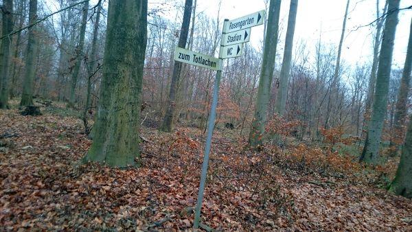 Pinneberg, im Stadtwald Fahlt